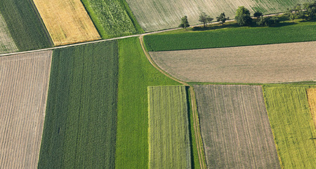 production area: Freshly plowed and sowed farming land from above, neatly cultivated in non-urban agricultural area, textured effect and background. Food production industry, arable land concept.