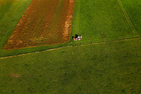 agricultural area: Tractor mowing pasture on big field of neatly cultivated agricultural land in non-urban agricultural area, textured effect and background, aerial view. Food production industry, arable land concept. Stock Photo