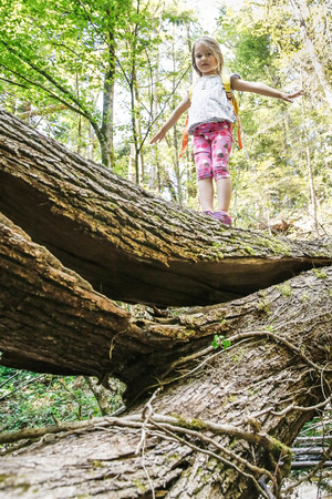 Fearless little girl scout standing on a fallen log in the woods, overcoming fear of heights, being courageous, finding equilibrium. Active, healthy and natural lifestyle concept.
