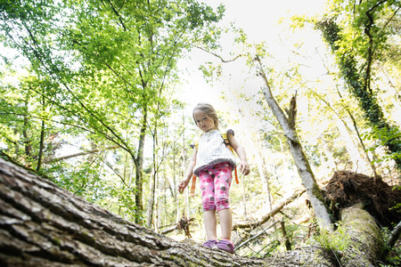 Determined little girl scout standing on a log in the woods, overcoming fear of heights, being courageous and adventurous, exploring pristine nature. Active, healthy and natural lifestyle concept.
