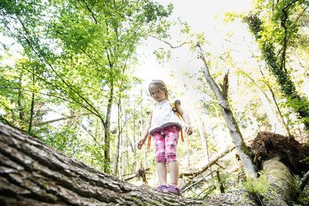Déterminé petite fille scout debout sur un journal dans les bois, surmonter la peur des hauteurs, être courageux et aventureux, découverte de la nature vierge. Active, saine et naturelle concept de style de vie. Banque d'images