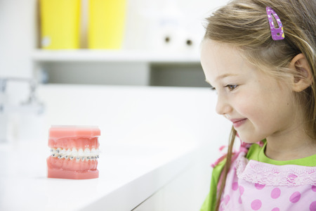 Little girl observing artificial model of human jaw with dental braces in dentists office, smiling. Pediatric dentistry, aesthetic dentistry, early education and prevention concept.