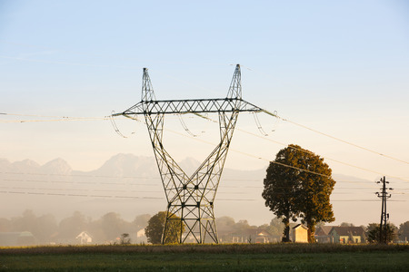 power industry: Big electricity high voltage pylon with power lines on a green grass in a misty morning near a village. Sustainable resources, green energy, energy and power industry concept.