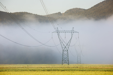 power industry: Big electricity high voltage pylons with power lines on a green meadow in a foggy morning. Sustainable resources, green energy, energy and power industry concept.