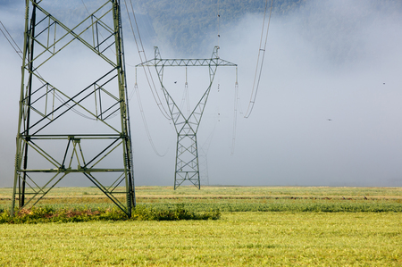 power industry: Big electricity high voltage pylons with power lines on a field in a foggy morning. Sustainable resources, green energy, energy and power industry concept.