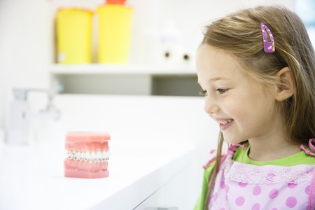artificial model: Little girl observing artificial model of human jaw with dental braces in dentists office, smiling. Pediatric dentistry, aesthetic dentistry, early education and prevention concept.