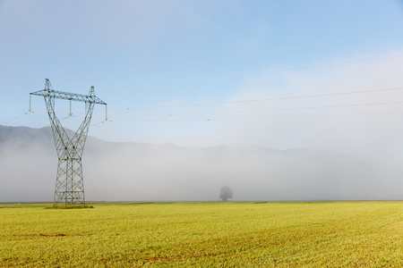 electric utility: Big electricity high voltage pylon with power lines on a green grass in a foggy morning. Stock Photo