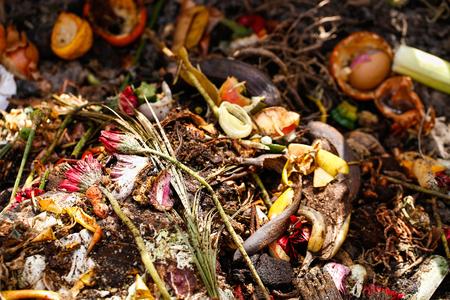 유기 생물 학적 부엌 쓰레기, 썩은 음식과 요리에서 남은, 퇴비를 위해 준비. 꽃, 커피 찌꺼기, 바나나, 샐러드, 양파와 당근 껍질. 쓰레기 수거 및 유기