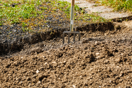 spading fork: Garden fork pitched in soil, symbolizing garden work, gardening and planting preparation. Housework, self-supply, food production, having a break from work concept.