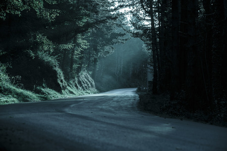 obscurity: Dark forest with empty road in receding light. Emotional, gothic background, eerie natural scene concept. Stock Photo