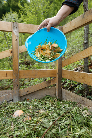 garden waste: Organic kitchen waste being thrown on a homemade compost in the garden. Natural gardening, waste sorting, food wasting concept.