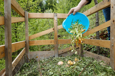 overspending: Organic kitchen waste being thrown on a homemade compost in the garden. Natural gardening, waste sorting, food wasting concept.