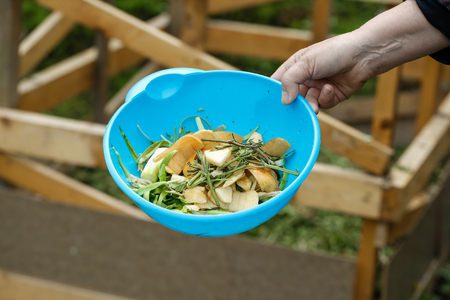 garden waste: Organic kitchen waste gathered for composting in the garden. Natural gardening, waste sorting, food wasting concept.