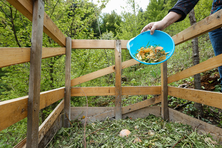 sorting out: Organic kitchen waste being thrown on a homemade compost in the garden. Natural gardening, waste sorting, food wasting concept.