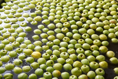 automated process: Ripe apples being processed and transported for size and color sorting and for packing in an industrial production facility. Healthy fruits, diet and food industry concept and textured background.