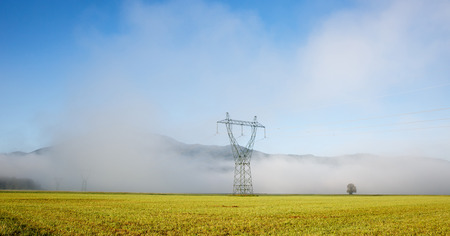 sustainable resources: Big electricity high voltage pylon with power lines on a green grass in a foggy morning. Sustainable resources, green energy, energy and power industry concept. Stock Photo