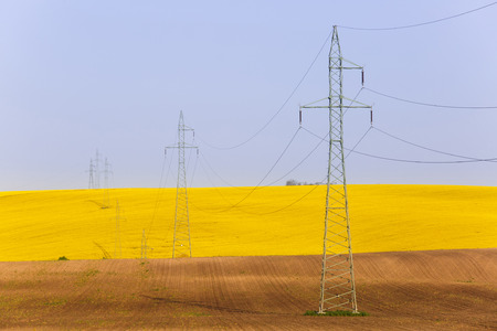 Electricity powerlines over vibrantly colorful rapeseed fields. Power supply, agriculture mass production, modern industrial landscape concept and background with copy space.    Stock Photo