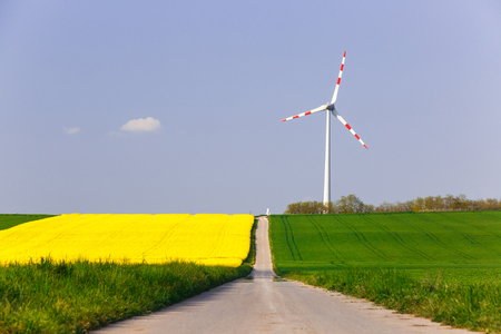 Wind farm with spinning wind turbine amidst agricultural land of intensive rapeseed production. Sustainable and renewable power production, ecology and environmental conservation concept.