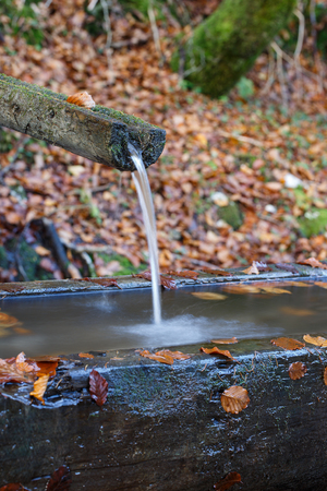 Mountain spring of pure, clear, fresh water with water trough in the forest. Natural resources, water source concept.