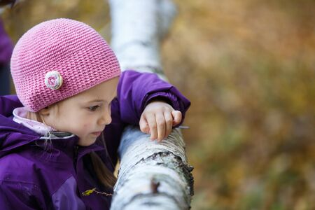 Girl playing in woods, observing birch tree, harvesting bark