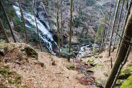 Wild forest with waterfall. Ecology, natural environment and biomass concept. Banco de Imagens - 137599436