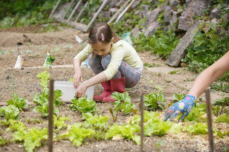 Little girl having fun in the garden, planting, gardening, helping her mother. Happy, natural childhood concept.  Banco de Imagens