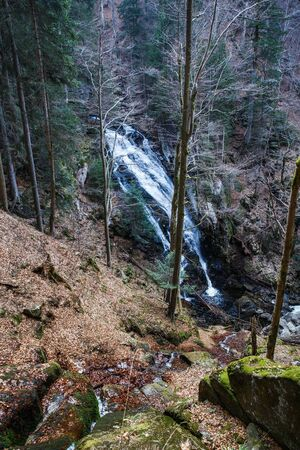 Wild forest with waterfall. Ecology, natural environment and biomass concept.   Banco de Imagens