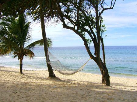 A lonely Hammock on a Caribbean beach