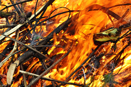 sensuous: Fire Stock Photo