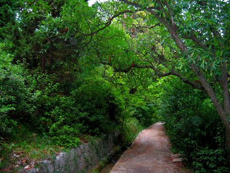 Walks in the botanical garden