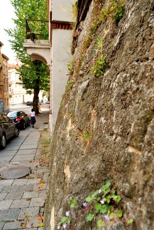Road-stone laid in an old European city