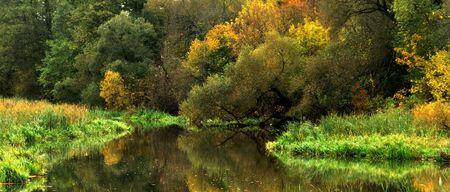 Golden autumn in the city park Stock Photo - 6119842