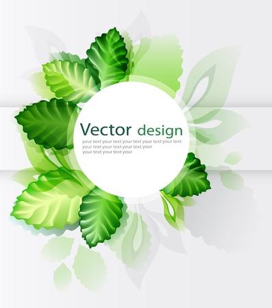 green leaves  Ilustracja