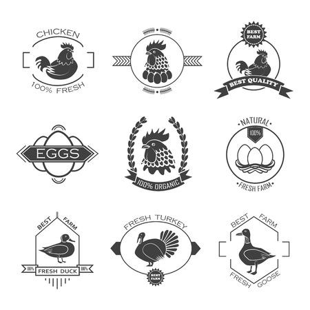 granja avicola: Conjunto de icono de la granja de aves de corral, emblema. Pollo, pavo, ganso, pato