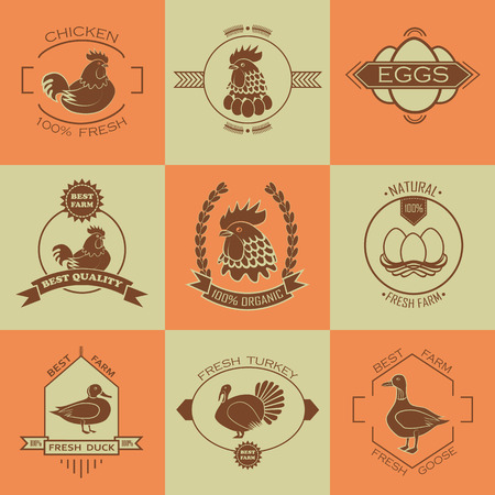 poultry farm: Set of poultry farm  and emblem.