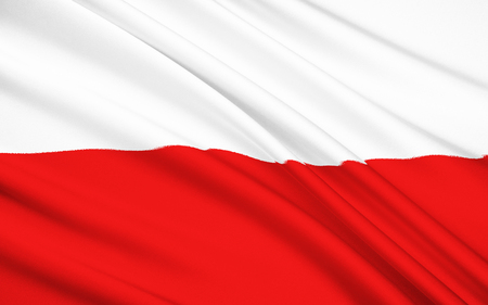 The National Flag of Poland Stock fotó - 45742095