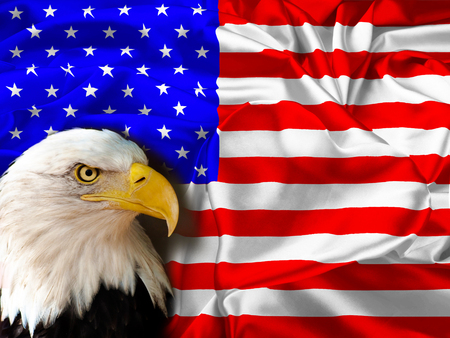 patriotism: The national flag of USA and heart. I love of USA.