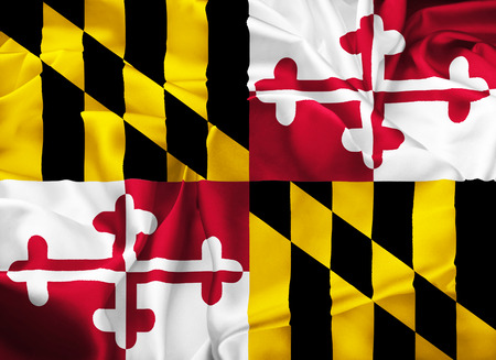 cockade: The national flag of of Maryland, Annapolis - United States