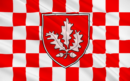 pledge of allegiance: Flag of County Londonderry, also known as County Derry is one of the six counties of Northern Ireland.