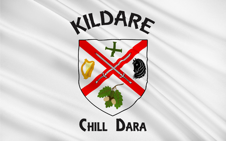 leinster: Flag of County Kildare is a county in Ireland. It is located in the province of Leinster and is part of the Mid-East Region. It is named after the town of Kildare.