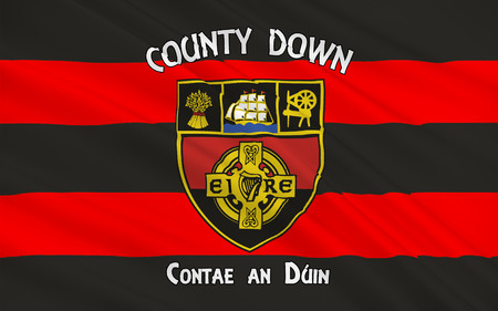 pledge of allegiance: Flag of County Down is one of six counties that form Northern Ireland, situated in the northeast of the island of Ireland.