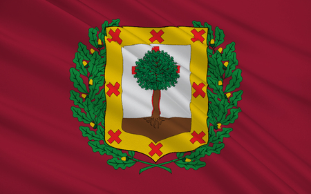 heir: Flag of Biscay is a province of Spain located just south of the Bay of Biscay. The name also refers to a historical territory of the Basque Country, heir of the ancient Lordship of Biscay. Its capital city is Bilbao.