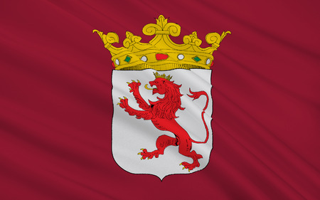 northwestern: Flag of Leon is a province of northwestern Spain, in the northwestern part of the autonomous community of Castile and Leon.