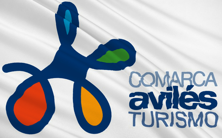 aviles: Flag of Aviles is one of 8 comarcas, administrative divisions of Asturias, which is a province and an autonomous community in Spain