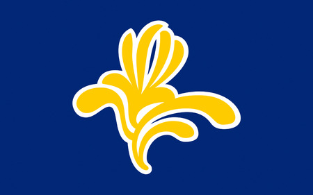jure: Flag of City of Brussels is the largest municipality of the Brussels-Capital Region, and the de jure capital of Belgium Stock Photo