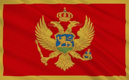 몬테네그로의 국기는 몬테네그로 정부의 제안에 따라 2004 년 7 월 13 일 국영 날에 공식적으로 채택되었습니다. 2007 년 10 월 22 일 헌법 선포와 함께 헌법