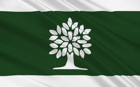 ontario: Flag of London is a city located in Southwestern Ontario, Canada along the Quebec City�Windsor Corridor. Stock Photo