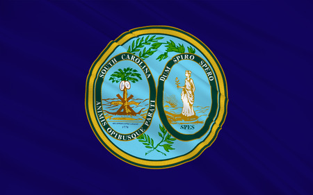 allegiance: Flag of South Carolina is a state in the southeastern region of the United States.