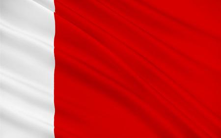 united arab emirate: Flag of Emirate of Dubai is one of seven emirates that constitute the United Arab Emirates (UAE). 3D illustration Stock Photo