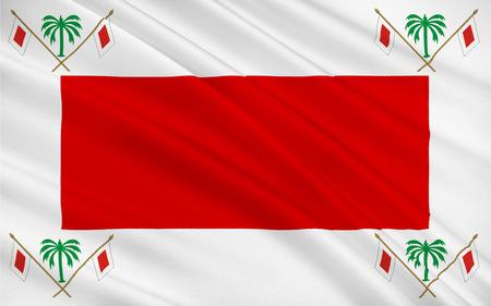 united arab emirate: Flag of Emirate of Sharjah is one of the states of the United Arab Emirates. 3D illustration